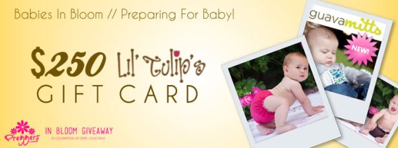 Babies in Bloom LilTulips $250 Gift Card Giveaway presented by Preggers